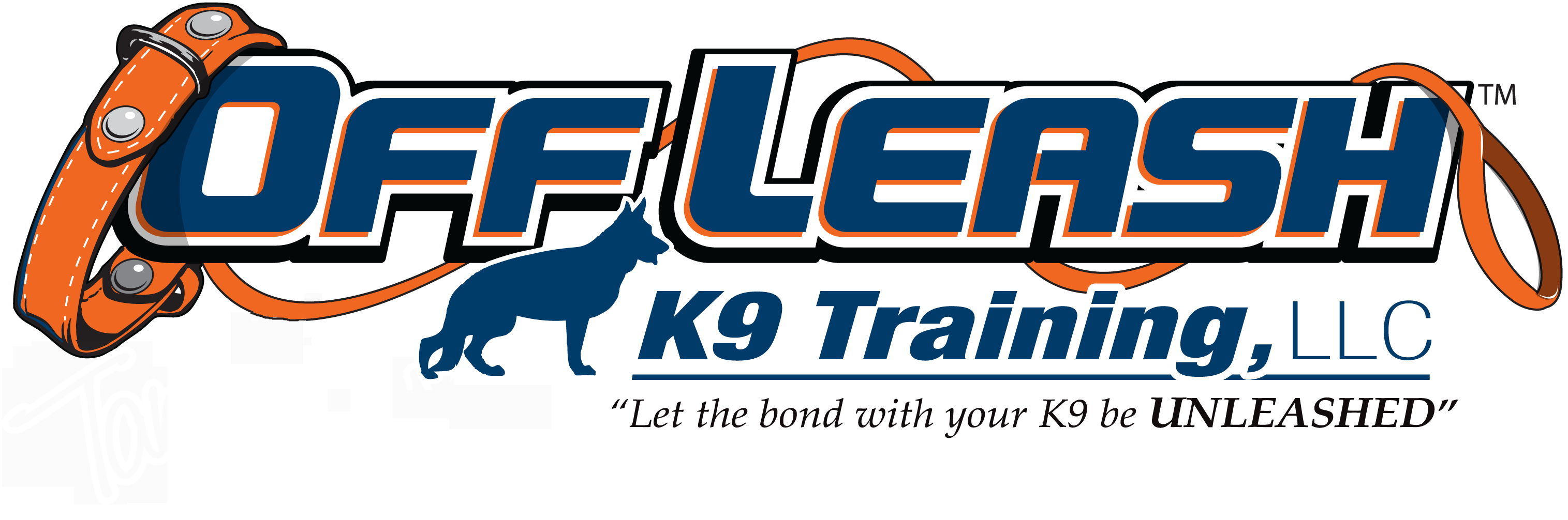 New Hampshire Offleash K9 Dog Training